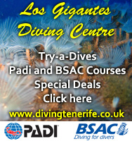 Los Gigantes Diving Centre in Tenerife http://www.divingtenerife.co.uk