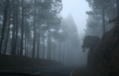 fog-on-teide